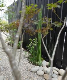 トクサの坪庭