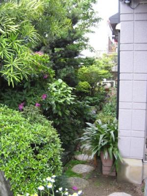 癒しの日本庭園